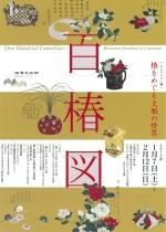 コレクション展 百椿図 椿をめぐる文雅の世界